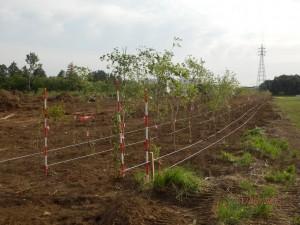 柵板設置工事掘削状況_6376